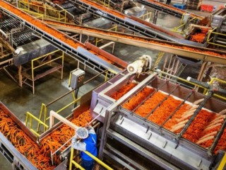 Fruit & Vegetable Processing Water Treatment