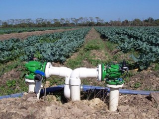 Smart Irrigation & Fertigation Israel