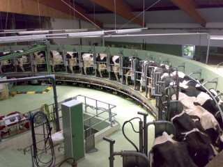 Dairy Farm Technologies